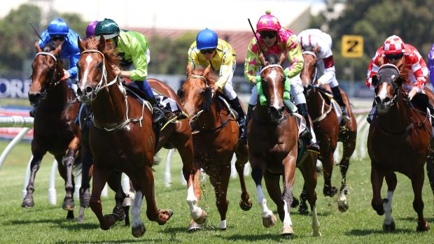 Time for cellarbrations: Hugh Bowman (dark green cap) and Gold Seventy Seven take out the Cellarbrations Handicap at ...