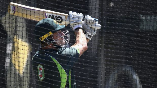 Tough times ahead: Shane Watson in the SCG nets on Saturday.