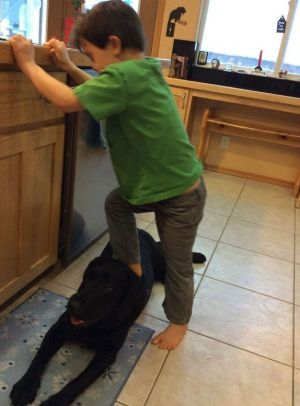 Sarah Palin's son Trig steps on the family dog.