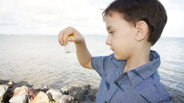 Sebastian Murphy, 6, looks at the Irukandji which stung him at Wellington Point.