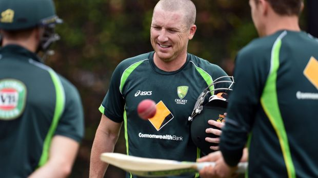 Brad Haddin's consistency is hard to fault as he approaches another Test in Sydney.