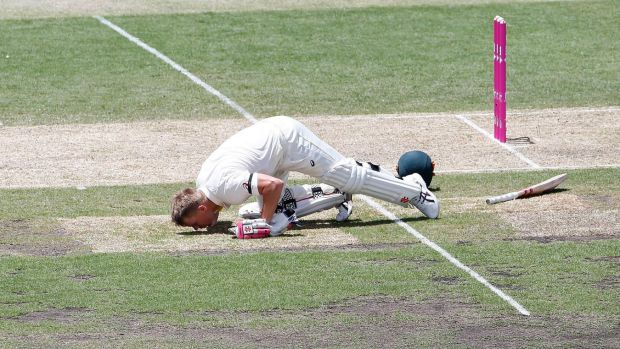Dave Warner kisses the SCG turf in tribute to the late Phillip Hughes after reaching 63 runs.