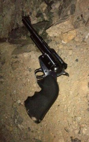 The gun allegedly used in the shooting.