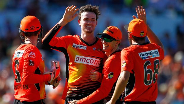 Scorchers set the tone with the ball before Michael Carberry batted them to victory