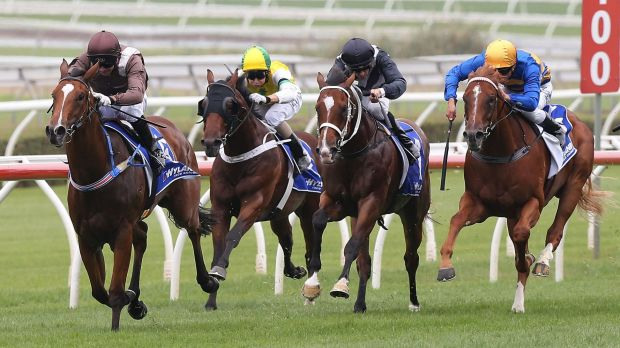 Flamboyant dash: jockey Paul King talked up the Golden Slipper prospects of Flamboyant Lass after an easy Randwick win.