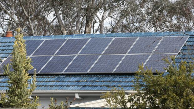 Small-scale solar held its own even as large-scale investments dived.