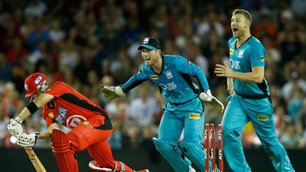 James Peirson and Andrew Flintoff of the Brisbane Heat celebrate as Callum Ferguson of the Melbourne Renegades is bowled ...