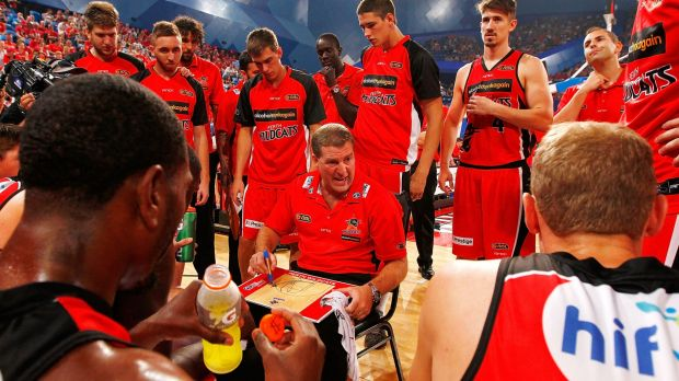 Looking north: The Perth Wildcats could be Asia-bound in the winter if CEO Nick Marvin gets his way.
