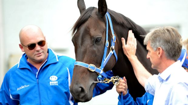 Keep her untarnished: Peter Moody announces the retirement of Black Caviar in April 2013.