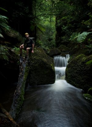 Nature on the rebound: David Noble at Hat Hill Creek Canyon.
