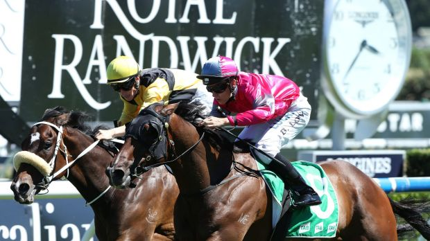 Pretty in pink: Brodie Loy teams up with Burbero to score at Randwick.