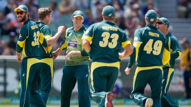 The Aussies celebrate a wicket.