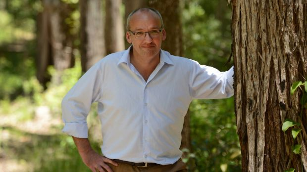 """We have to protect the koala's habitat"": NSW Labor leader Luke Foley wants to establish a koala national park."