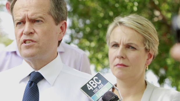 Federal Labor leader and his deputy Tanya Plibersek on the campaign trail in Queensland.