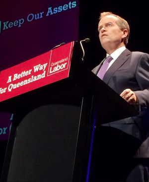 Federal Opposition Leader Bill Shorten speaks in Ipswich.