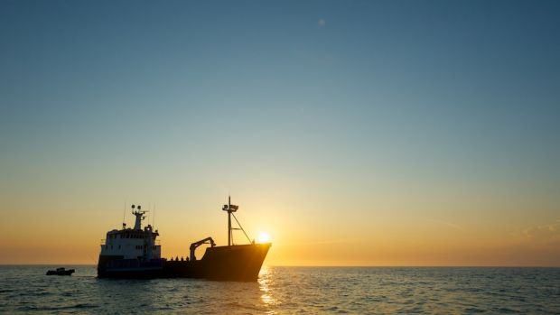 The research will take their vessel from Perth to Broome in a bid to lean more about sharks of WA's coast