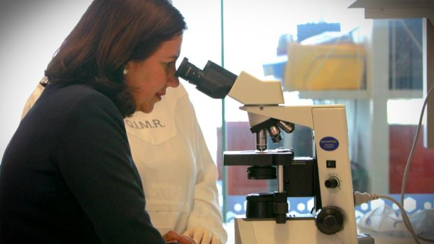 Annastacia Palaszczuk visits the QIMR Berghofer Medical Research Institute on Wednesday.