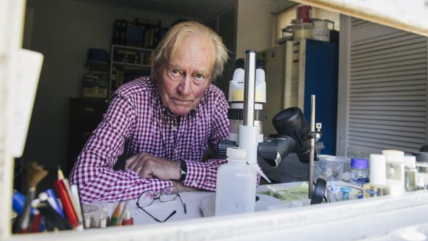 Canberra Entomologist Dr Philip Spradbery is shocked at the changes in the Black Mountain site and describes the mood ...