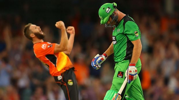 TV hit: Cricket Australia is especially happy with the number of first-time BBL viewers being dragged through the turnstiles.