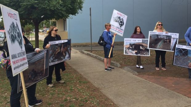 Animal welfare activists outside Werribee Magistrates Court.