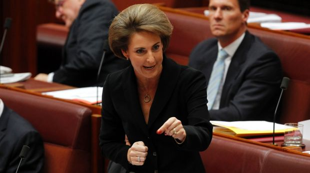 Michaelia Cash will announce a workplace gender equality strategy on Wednesday.