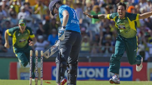 Tormentor: England batsman Eoin Morgan is bowled by Mitchell Johnson.
