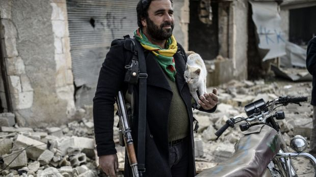 A Kurdish fighter holds a cat in the centre of Kobane.