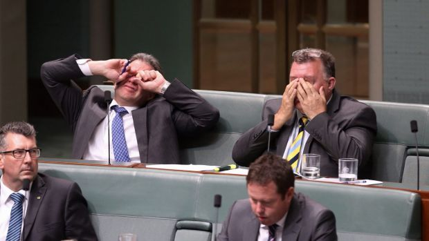 Dennis Jensen and Craig Kelly during question time at Parliament House last December.