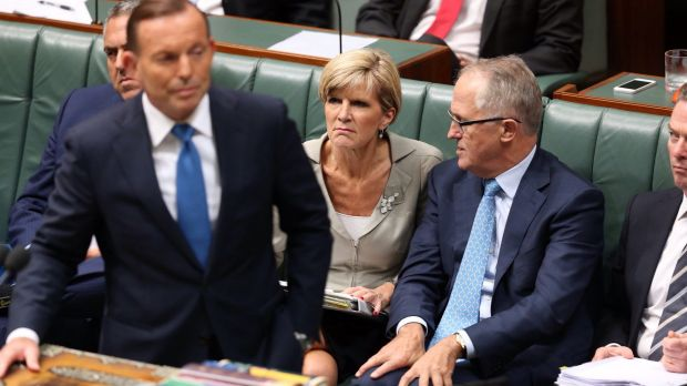 Prime Minister Tony Abbott, Julie Bishop and Malcolm Turnbull during question time last December.