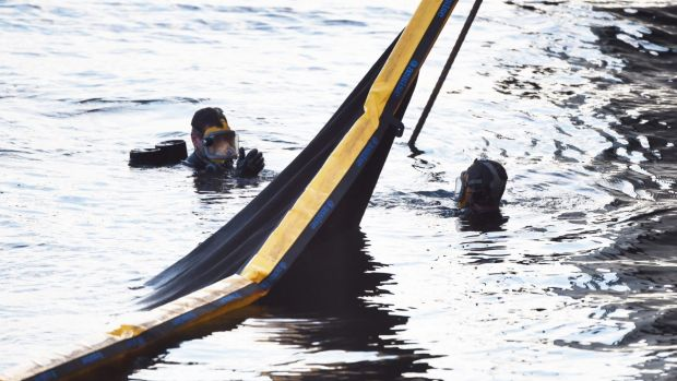 Divers search the water for a swimmer who went missing off Balmain.