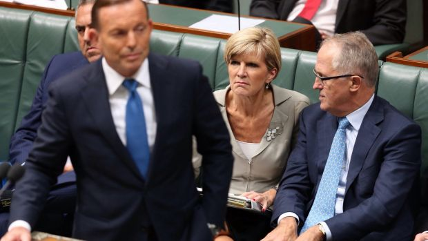 Bishop and Turnbull together in Federal Parliament - and they'll be side by side at a fundraiser on Sunday, too.