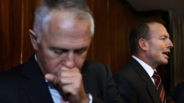 Communications Minister Malcolm Turnbull could replace Prime Minister Tony Abbott.