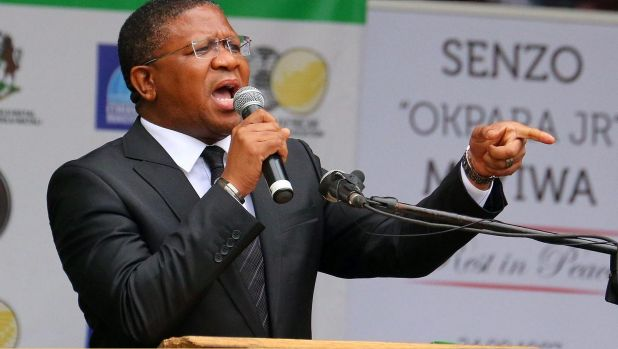 """Pep talk: South African sports minister Fikile Mbalula has reminded the Proteas """"you are not playing against cows....you ..."""