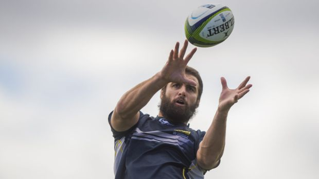 Scott Fardy, one of the senior Australian Wallabies in the ACT Brumbies pack.
