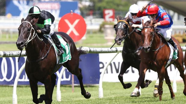 Plan comes together: Jason Collett rides Adorabeel to victory at Rosehill on Saturday.