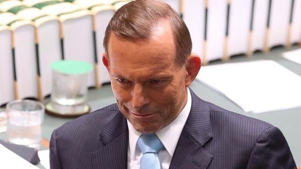The armed guards will be in place whenever a member of the executive, which includes Prime Minister Tony Abbott, are in ...