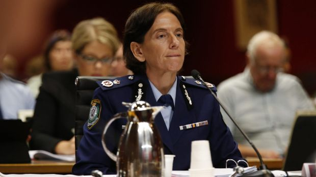 NSW Police Deputy Commissioner Catherine Burn gives evidence at the  inquiry.