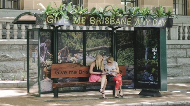 This rainforest-themed bus shelter is near City Hall on Ann St as part of a new advertising campaign.