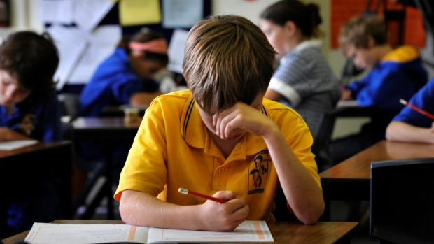 Children at Alphington Primary school sitting the Naplan test.