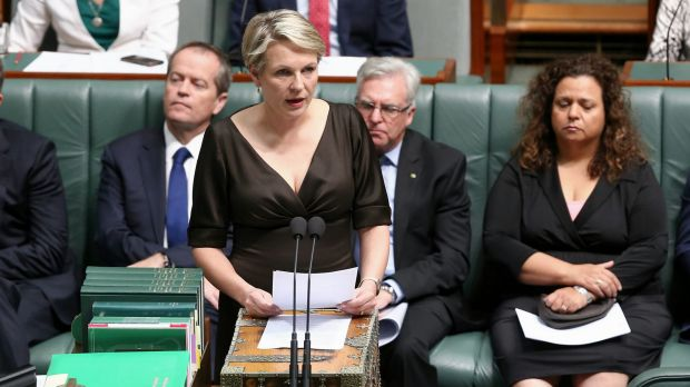 Deputy Opposition Leader Tanya Plibersek speaks during a motion for a stay of executions of Andrew Chan and Myuran Sukumaran.