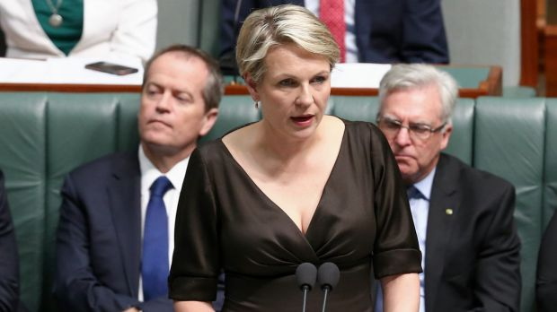 Deputy Opposition Leader Tanya Plibersek speaks during a motion for a stay of executions of Andrew Chan and Myuran ...