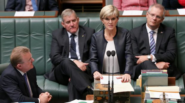 """Foreign Affairs Minister Julie Bishop: """"Executing these two young men will not solve the drug scourge in Indonesia."""""""