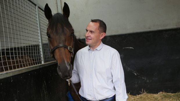 Day of hope: Chris Waller and He's Your Man are hoping for success at Randwick