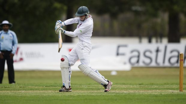 Young gun: Wests/UC opener Matthew Gilkes on his way to 80 against Eastlake on Saturday.