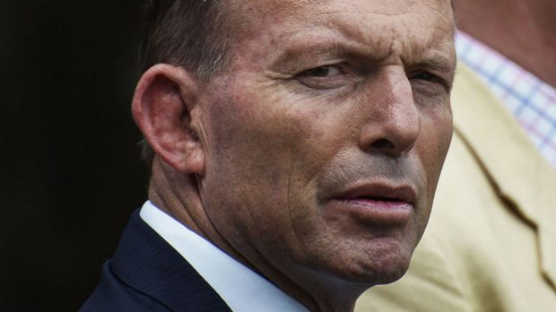 Tony Abbott reportedly called for 3500 Australian troops to fight IS in Iraq.