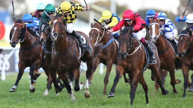 Hugh Bowman rides Hallowed Crown in the group 1 Golden Rose last September.