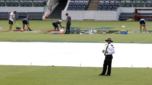 A security guard next to the pitch at Manuka Oval on Sunday ahead of the first Canberra game of the Cricket World Cup.