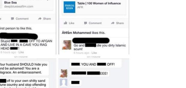 The posts allegedly made by a 22-year-old Ipswich woman on Mariam Veiszadeh's Facebook page.