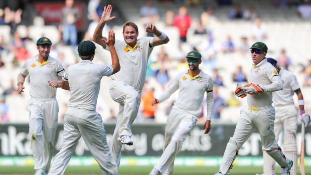 Pain no barrier: Ryan Harris celebrates a wicket in the recent Test series against India.