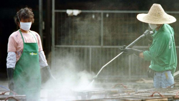 A worker uses a chemical spray to clean chicken cages at Hong Kong's Cheung Sha Wan chicken wholesale market, which was ...